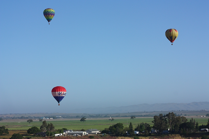 hot air balloons flying over Paso Robles, California