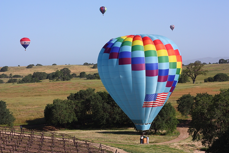 our balloon rests after landing in a vineyard in rural Paso Robles