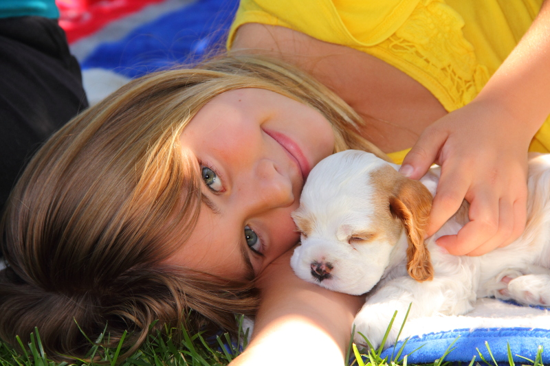 cute girl with puppy