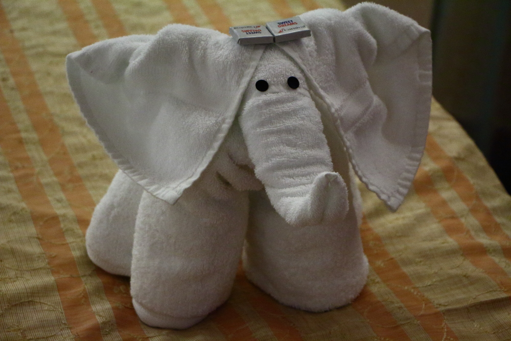 elephant towel animal on Carnival Cruise lines