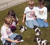 Kids with Cocker puppies