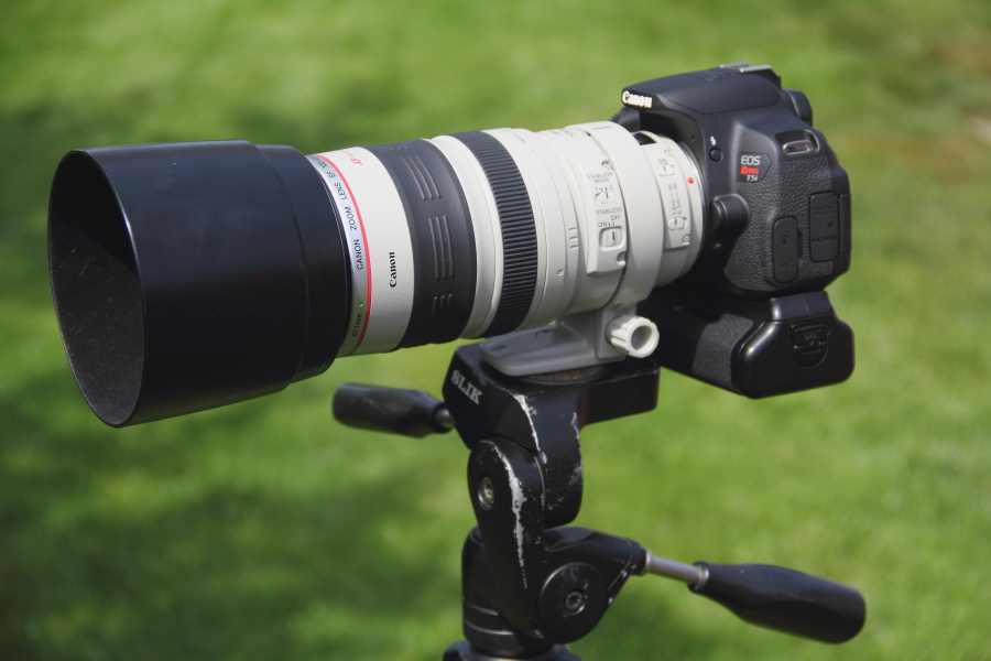 Canon T5i with 100-400mm L series lens