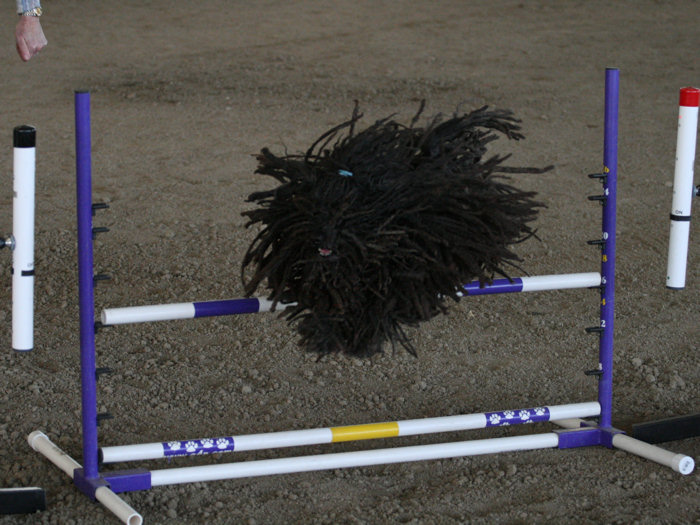 The Flying Mop